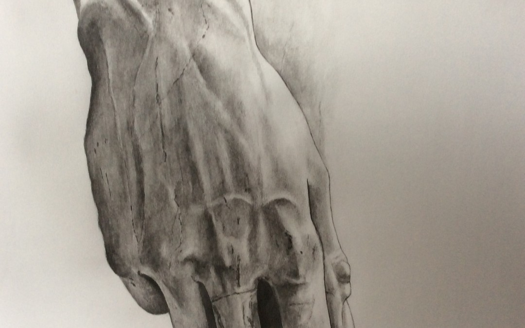 NEW: Hand of Michelangelo's David by Sally Williams